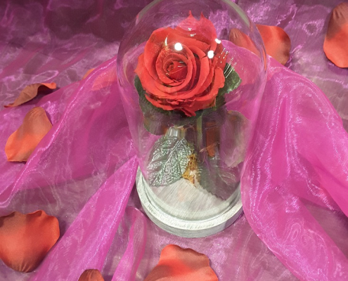 Rose éternelle de chez Plastiflor